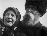 M. Shlenskaya